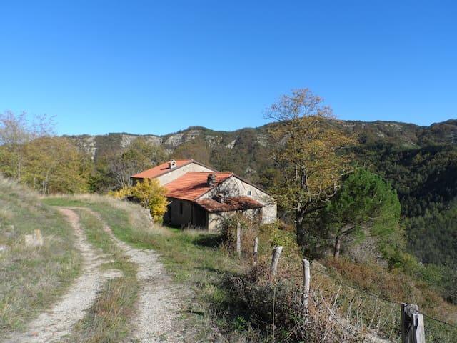 Canova, Fantella
