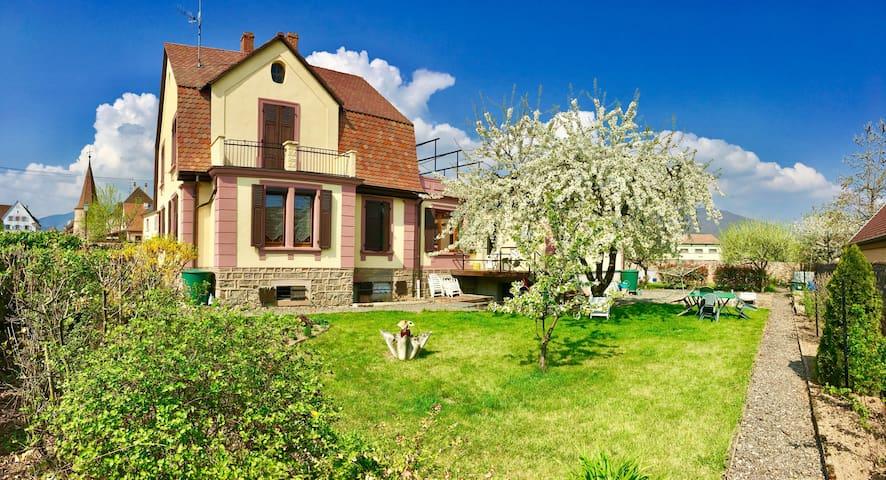Maison Vignoble - proche Colmar / Kaysersberg