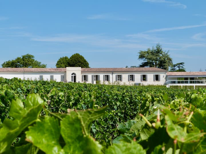 Région de St Emilion, Château dominant les vignes