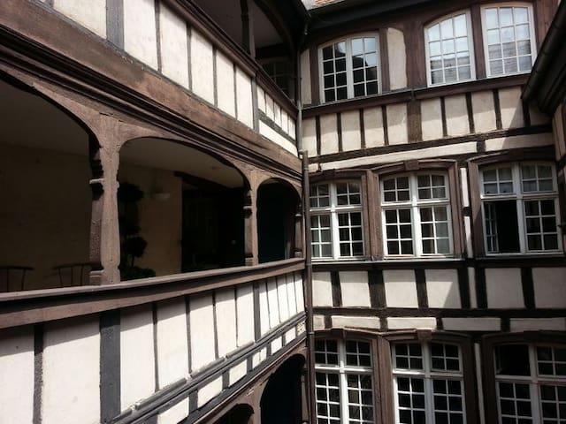 Un bijou à Strasbourg : typique, centre historique - Strasbourg - Lägenhet
