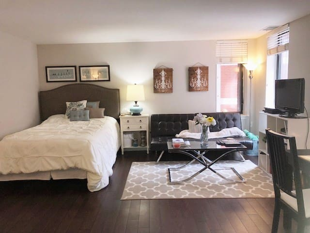 Luxury Studio Apt (Clean, Quiet, and Cozy!)