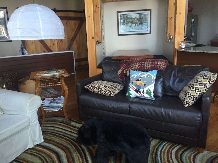 Living area has leather sleep sofa.