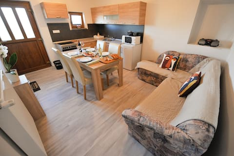 Apartment Marjana for 3 near Brežice