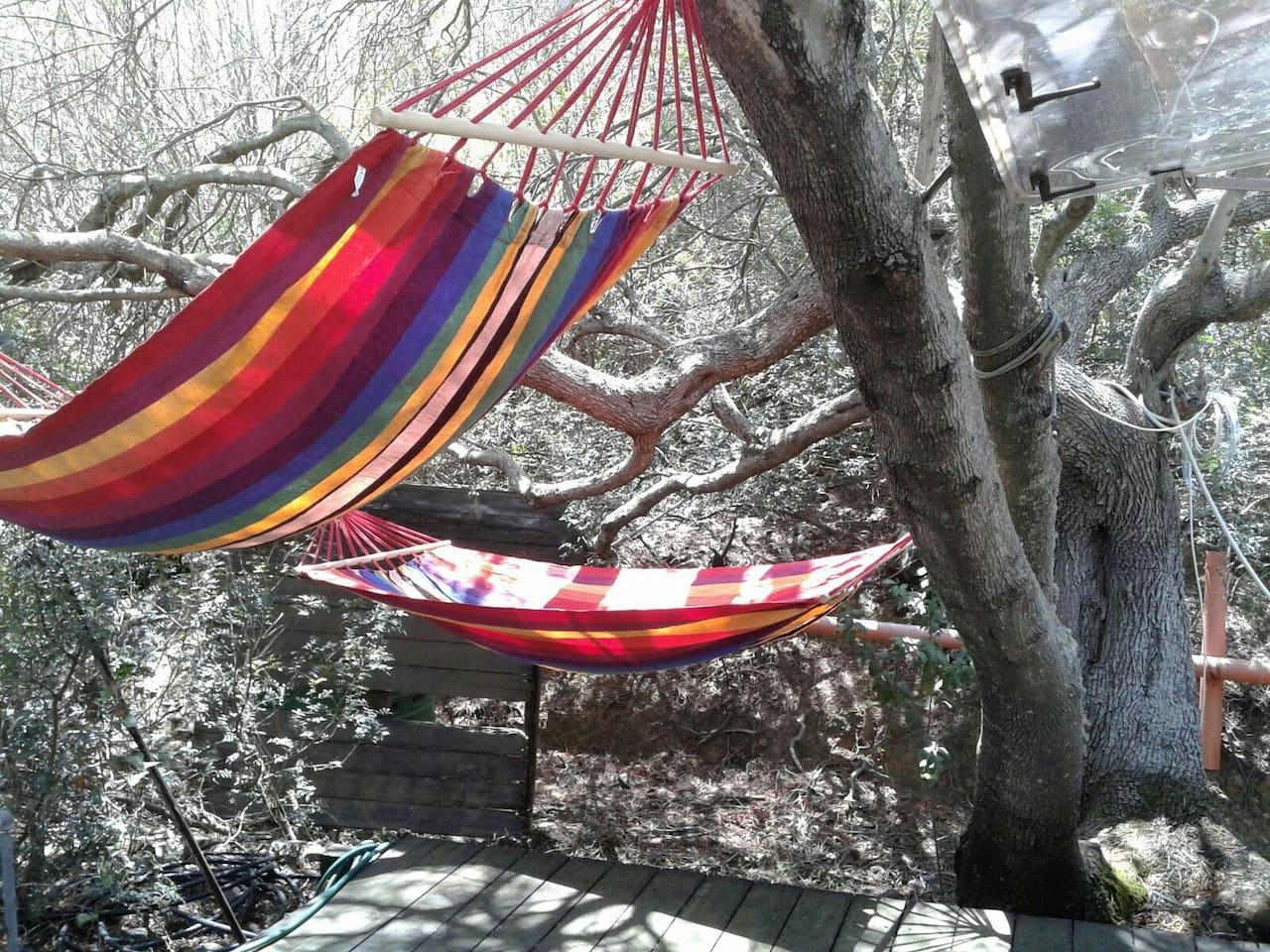 relax sotto gli ulivi