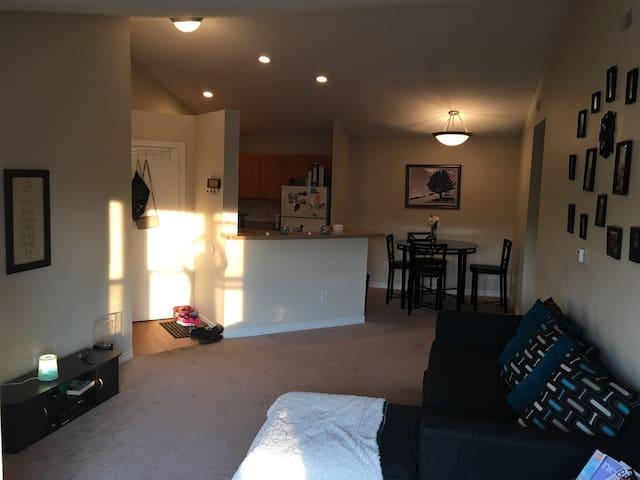 Cozy Palace of Auburn Hills