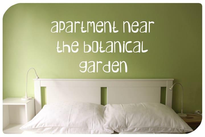 Byt pri Botanickej záhrade
