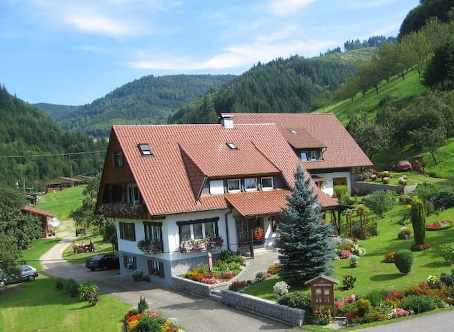 black forest as it´s best - Ottenhöfen im Schwarzwald - Apartment