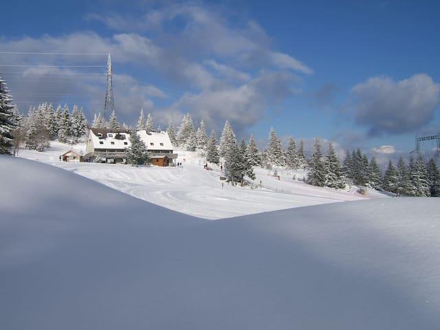 Maison au coeur de la nature - Alsace - Huis