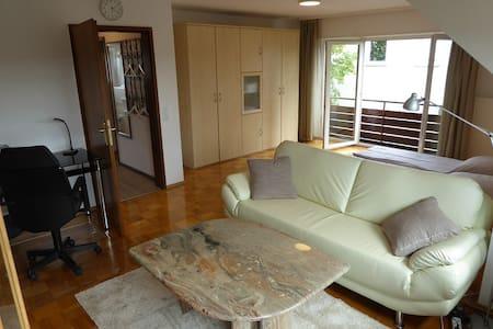 Helle neu sanierte 1,5 Zi. Wohnung in schöner Lage - Apartament