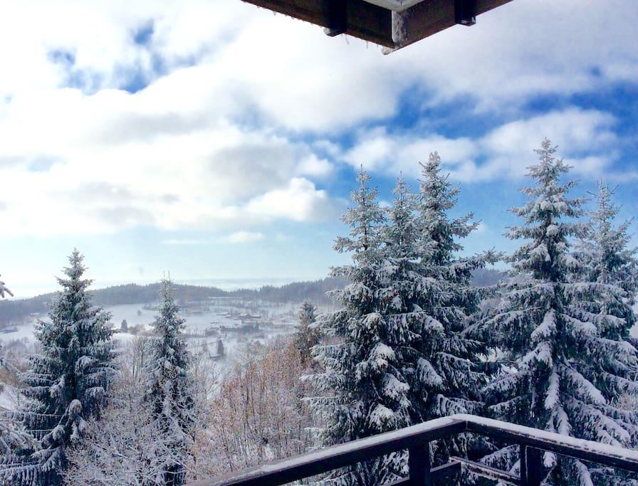 Winter Wonderland Bavarian Forest