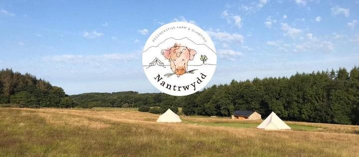 Nantrwydd Farm Glamping - Cegin
