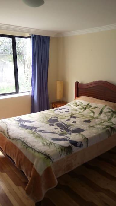 Comfortable bed in quiet room