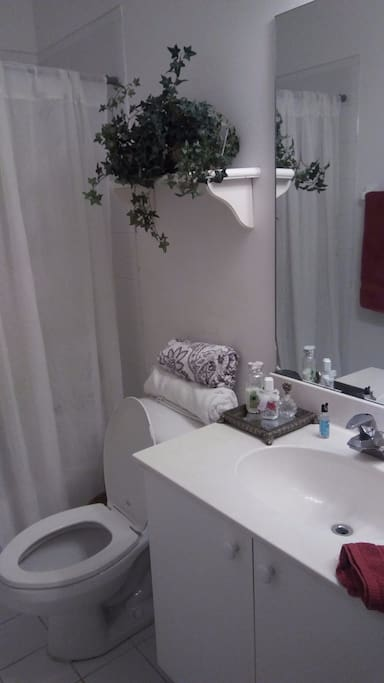 Fortlauderdale Rooms For Rent