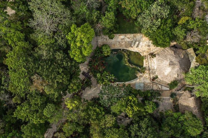 Nature & Amazing Bungalow in Ruta de los Cenotes