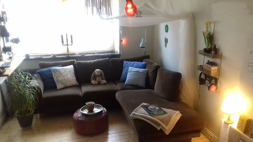 The cosiest couch fits  a Queen or 2! - Norrköping - Apartamento