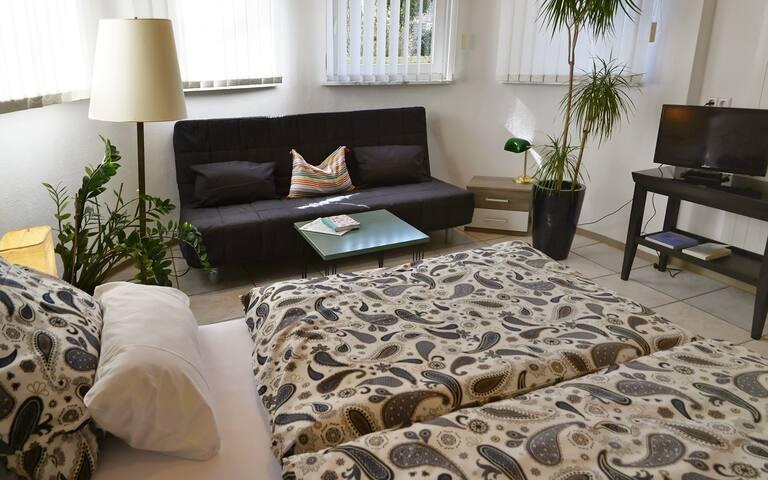 Komfortable  Ferienwohnung am Bodensee - Friedrichshafen - Apartament