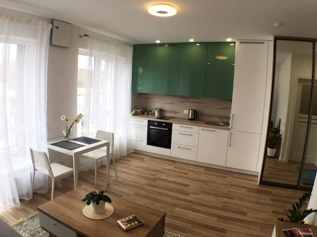 Newly built Stylish Ozas park studio flat! WIFI