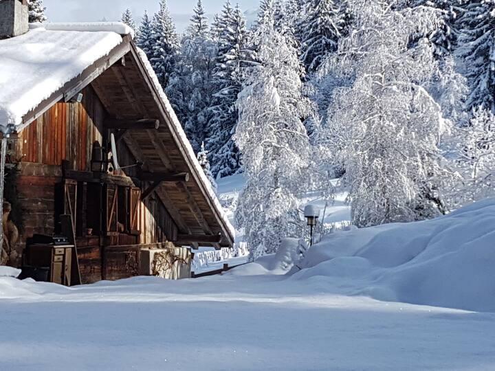 The Bear Mountain Lodge