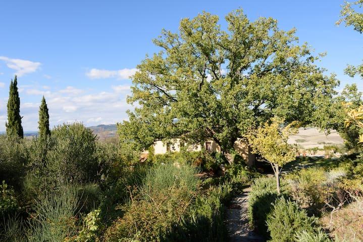 I FABIANI: ECCELLENZE CULINARIE E AMPI PANORAMI - Montenero d'Orcia - Cabaña en la naturaleza