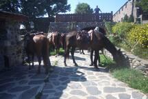 passage des cavaliers