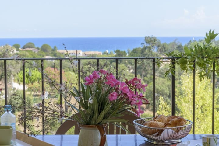 House - 400 m from the beach - Favone - Hus