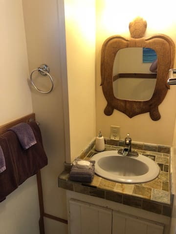 Ground Floor Media Room Bathroom