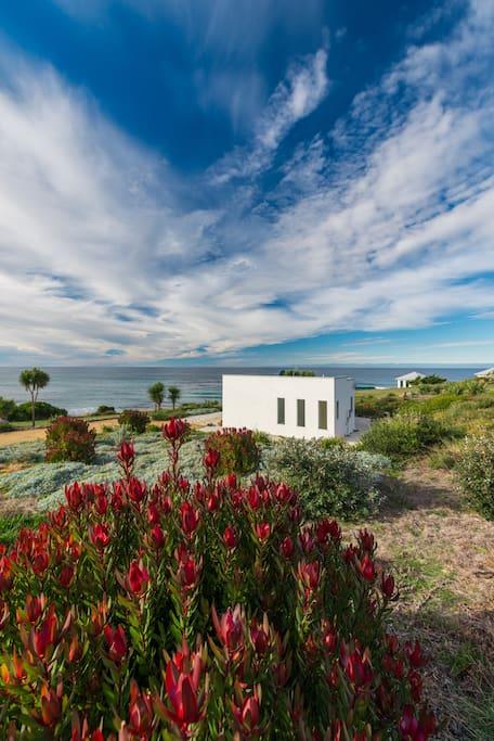 Luxury Oceanfront Villa Falmouth