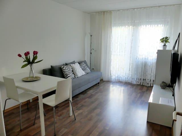 2-Zi Apartment Karlsruhe Zentrum Innenstadt-West