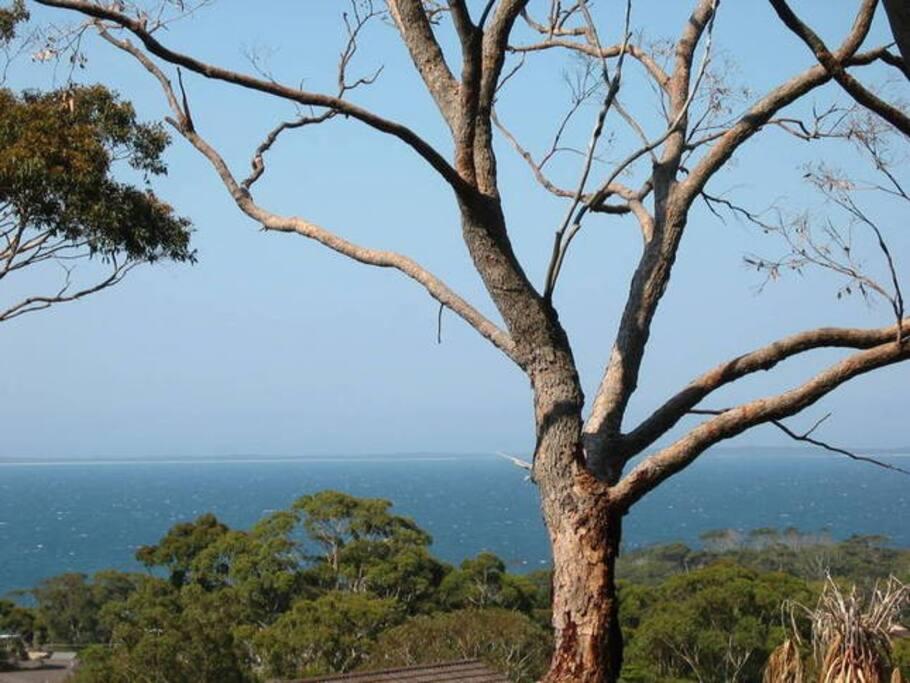 Beautiful views of Jervis Bay