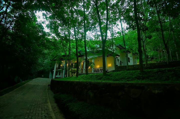 Royal retreat at lush green plantation.