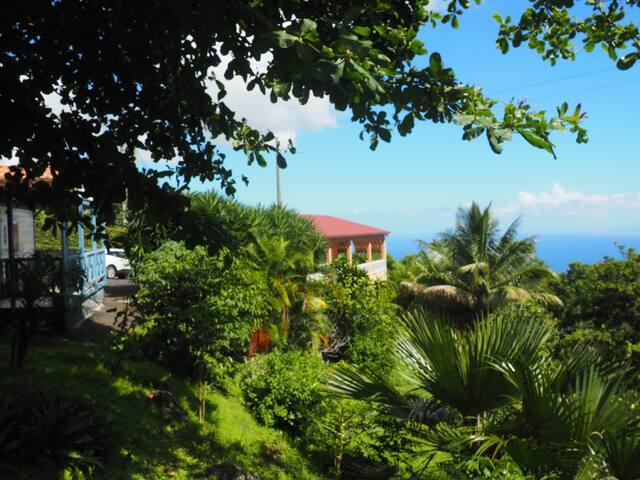 Maison créole/vue panoramique/Nature et Océan