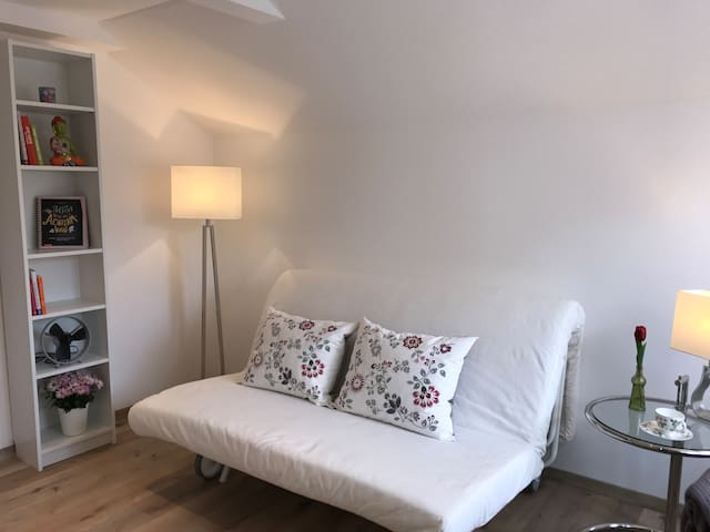 Charming room near Zurich, centrally located