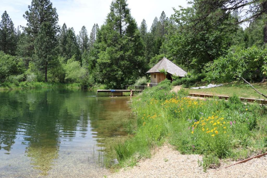 pond and sauna