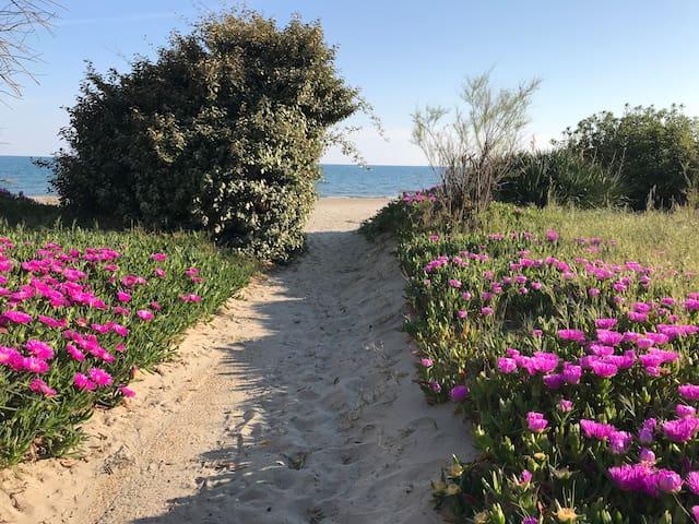 Carnon: Studio rénové première ligne face à la mer