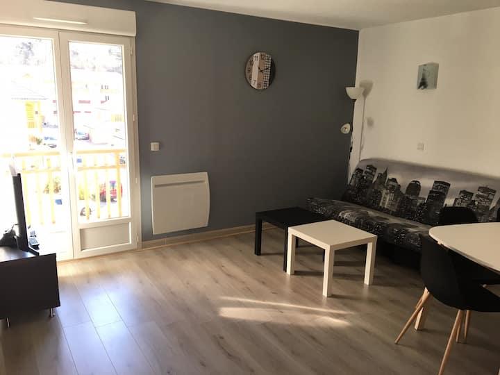 Joli appartement rue Pasteur