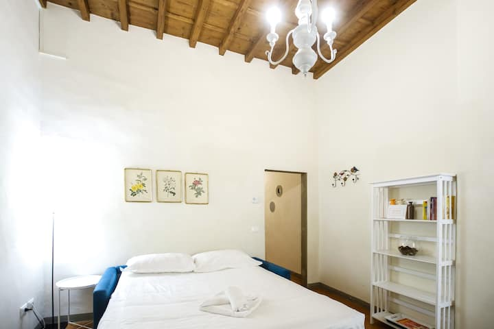 Roomy and elegant apartment by Piazza Pitti