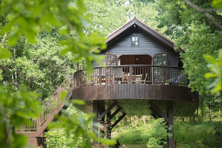 La Cabane de la Mésange