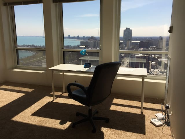 Lovely Lake View 1b1b near UofC - Chicago - Apartment