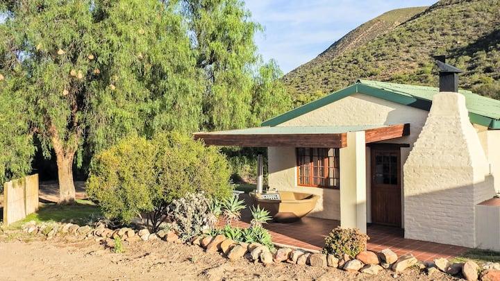Duiker Self Catering Cottage - Klein Karoo - R62