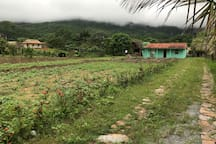 Fron of the Finca