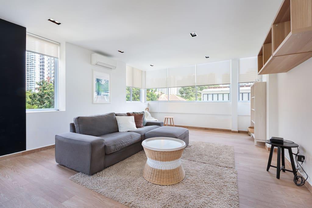 Living room: sofa and coffee table