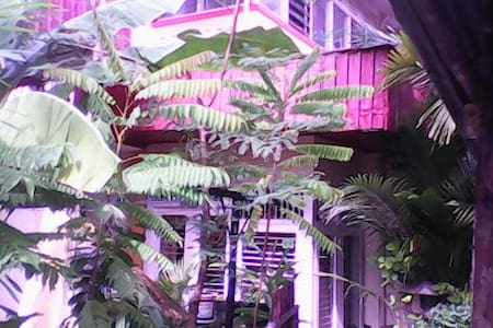 home stay holiday and jungle mentawai trekking - Guesthouse