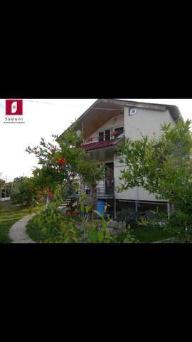 Twin room in Family Wine Complex Saduni