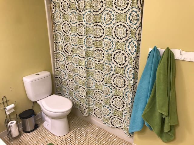 Hallway bathroom has a new toilet and a full size tiled tub/shower.