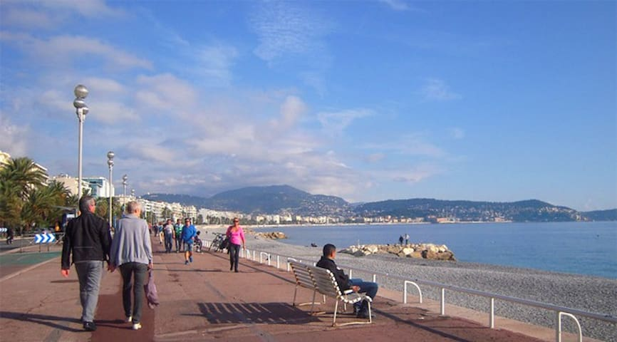 Perfectly situated 50m from Promenade d Anglaise - Nice - Apartemen