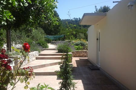 National park Mljet holiday house - Goveđari 7A