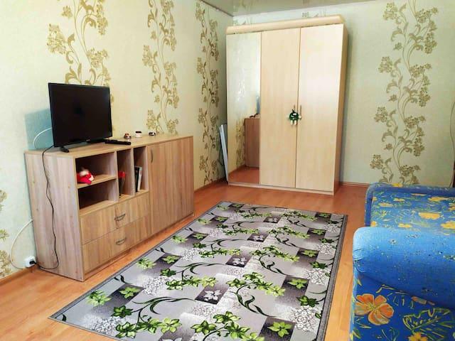 Отличная 1-к квартира на кВ. Волкова