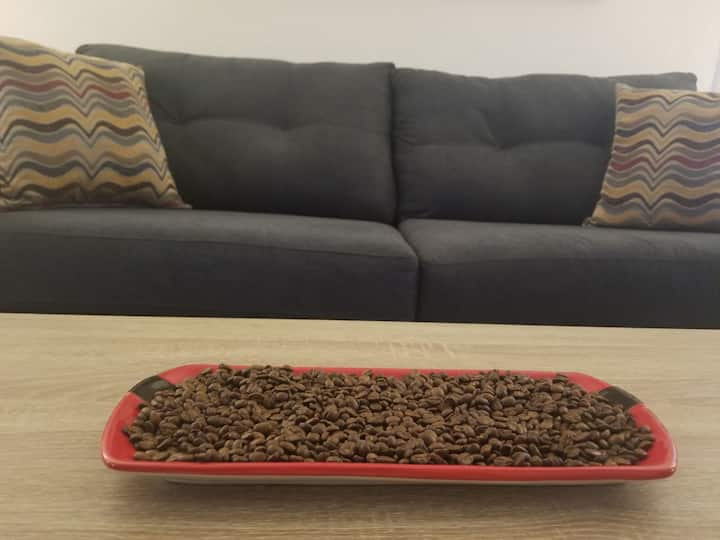 Bright,2BR house near LAX–Self Check-in & Parking