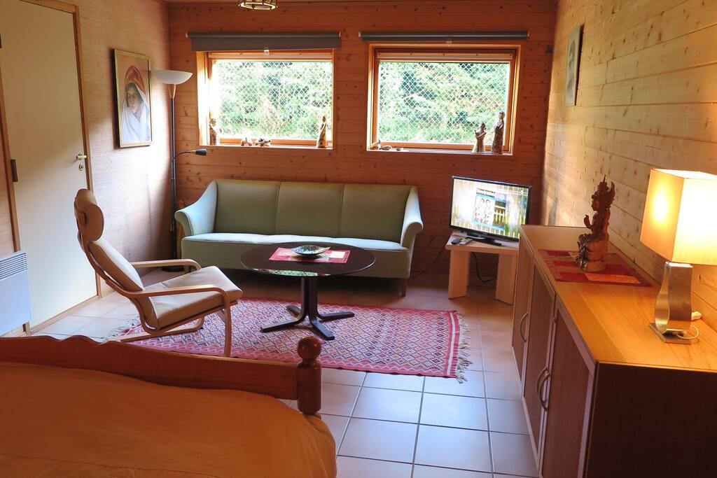 Pièce de 20 m2 avec coin salon et chambre