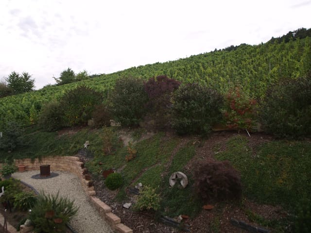 MOSEL Vineyard Kuschel Appartement - Bernkastel-Kues